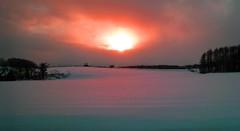 Niseko Sunset