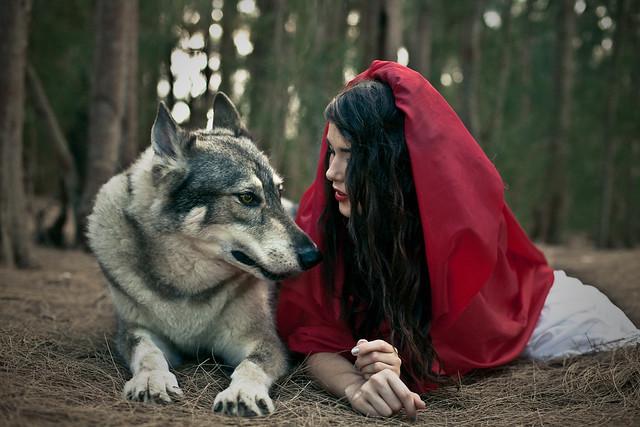 SHANNONALEXABRAY.com - Red Riding Hood