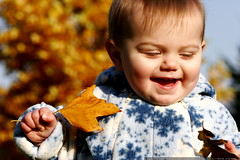 he found two leaves    MG 5270