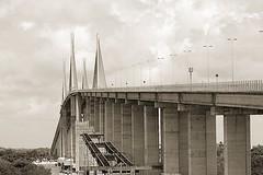"""""""Foto-Safari Ponte Newton Navarro"""""""
