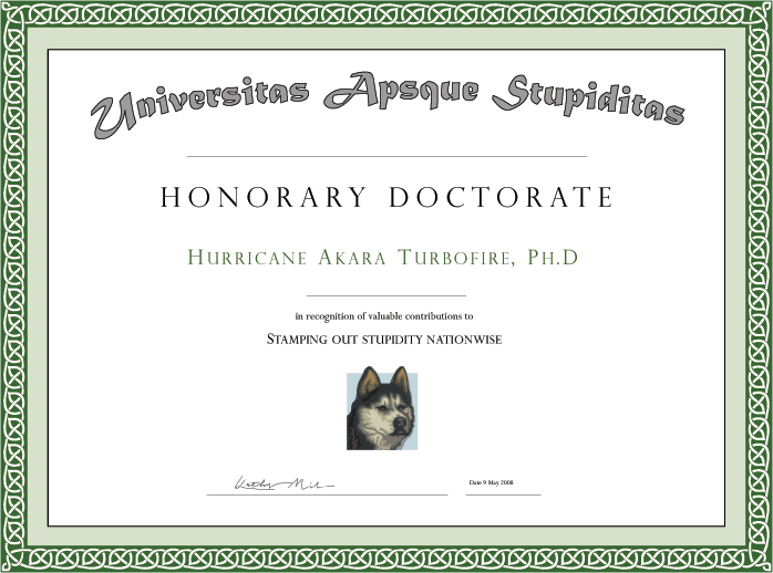 Honorary certificate sample pictures to pin on pinterest for Honorary member certificate template