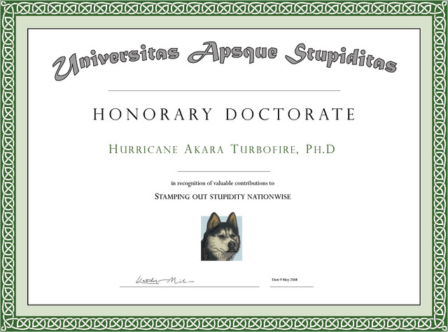 phd certificates templates