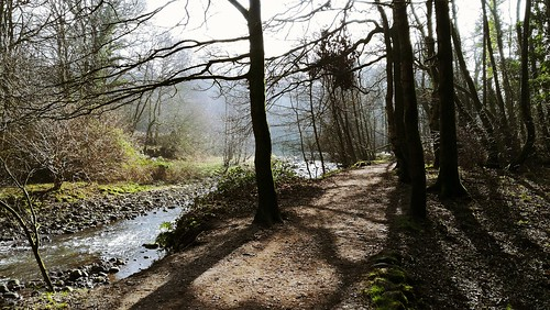 river walks ramble scenic counryside lancashire picnic carpark dogs brock valley