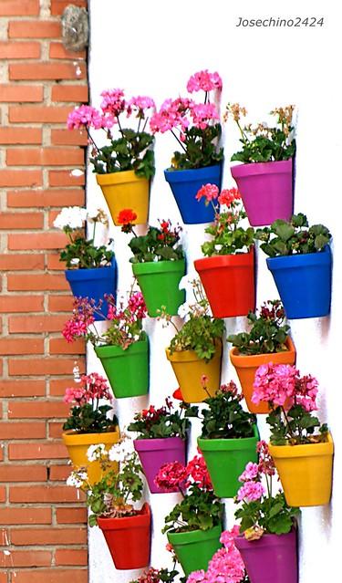 Macetas de colores flickr photo sharing - Macetas de colores ...