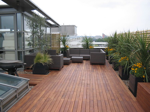 modern  natural materials  neutral colour architectural planting