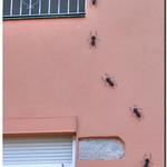 El tiempo para esta semana en Figueres