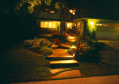 David's Garden