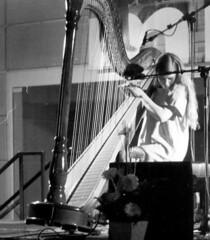 string instrument, clãrsach, musician, harp, monochrome photography, monochrome, black-and-white, string instrument,