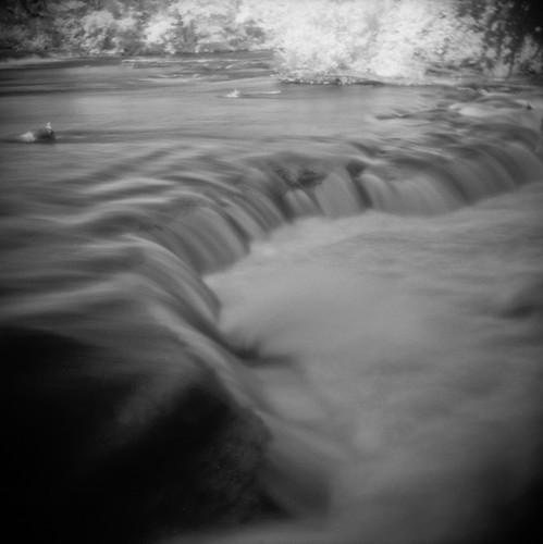 Untitled Holga Infrared