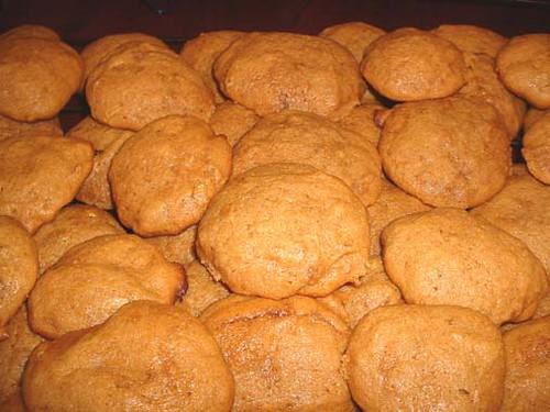 bisquick garlic cheese biscuits
