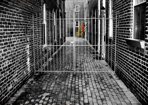 christmas xmas windows decorations blackandwhite bw white black color tree brick wall fence virginia gate holidays downtown alone moody path christmastree historic va manassas duotone lonely charming discarded crooked bulidings selective selectivecolor chrysti downotwn platinumphoto kandwhite platinumsuperstar christyhydeck