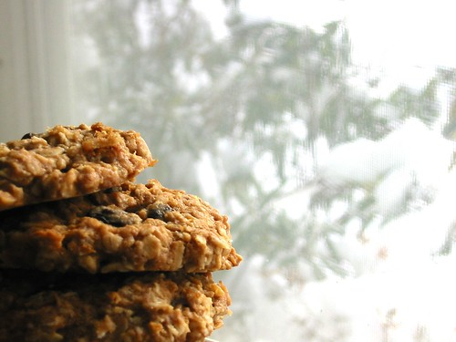 Oatmeal-Raisin Cookies 3