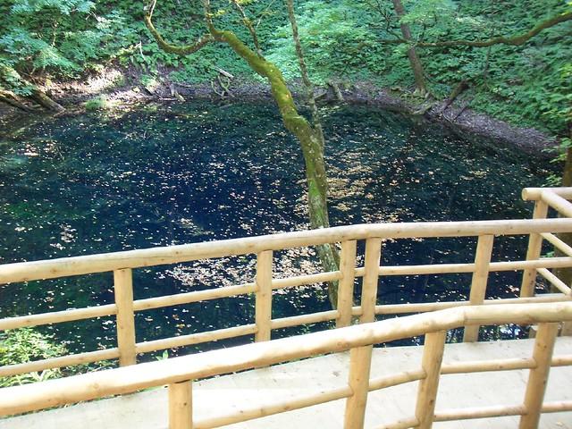 Aoike (Blue pond) 青池 (十二湖, 青森県)
