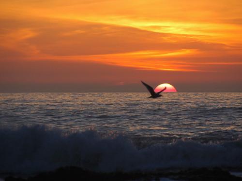 Sunset at half moon bay #1