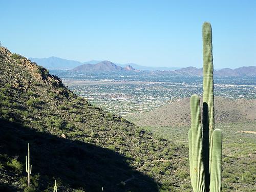arizona mountain mountains desert hiking hike scottsdale saguaro sonoran camelbackmountain camelback mcdowell mcdowellsonoranpreserve azhike alhikesaz sunrisepeaktrail