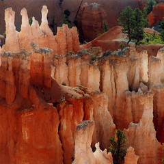 USA - Utah - Bryce Canyon Sq1