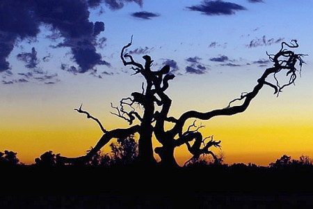 Sunset @ Barragup