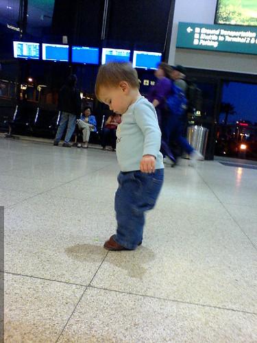 sequoia inspects the SAN airport floor   DSC00471