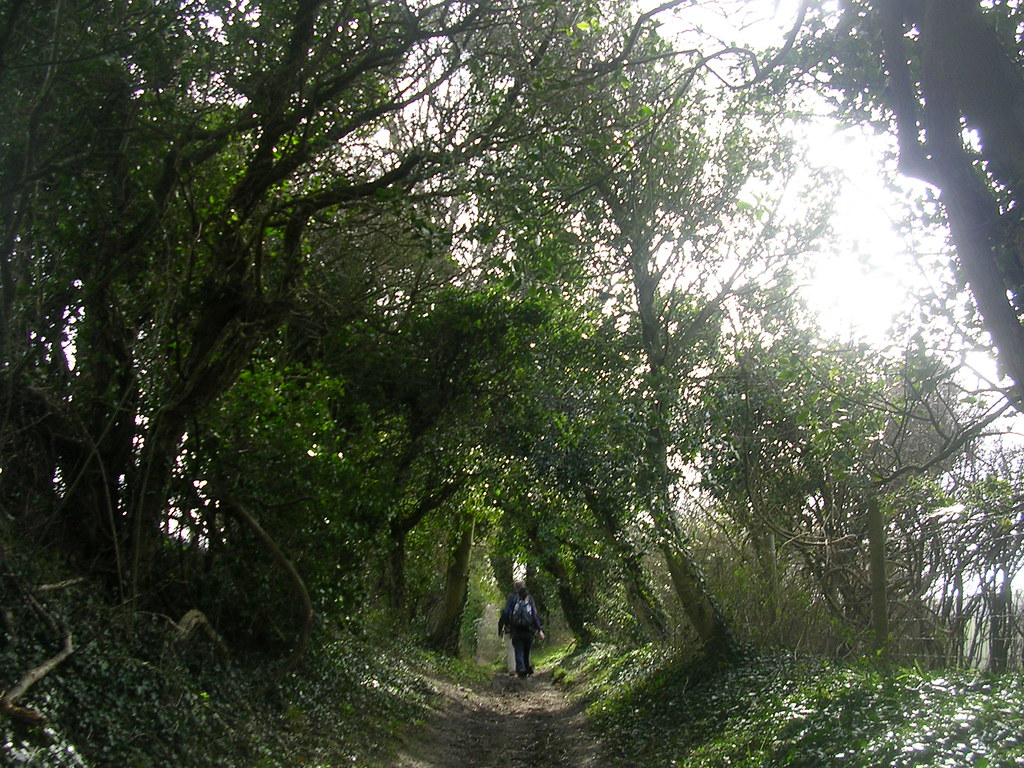 Bridleway Hassocks to Upper Beeding