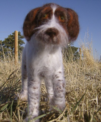 Wooliture German Wirehaired Pointer front