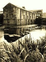 Bradford mill