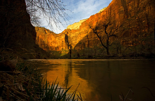 dawn - Virgin River - Zion NP - 3-29-09  01b