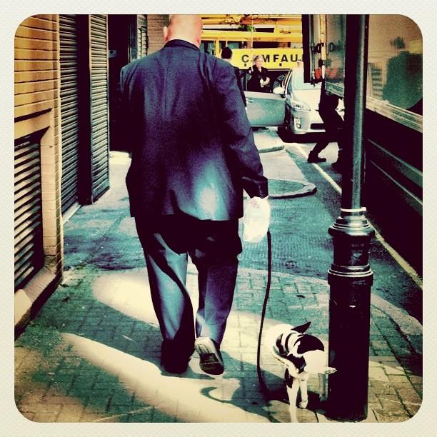 Big Man, Small Dog...