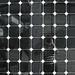 Fallen in my own net by Micheo