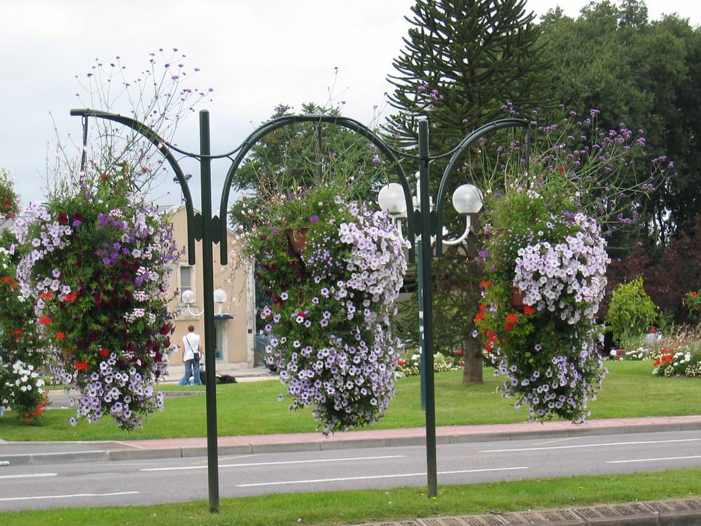 Angouleme Floral Display