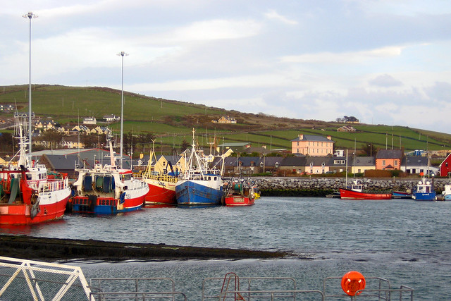 The colorful Dingle Harbor.