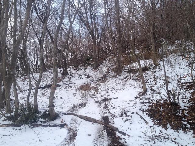 西台山・タンポ 登山口