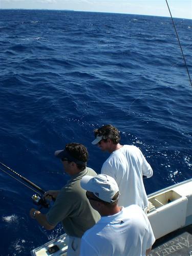 Bermuda fishing flickr photo sharing for Fishing in bermuda