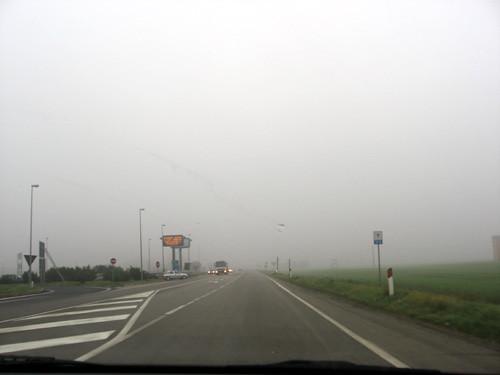 Fog Car Games Free Download