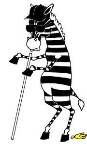 Blind Zebra