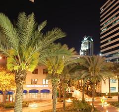 Night, St. Petersburg, FL