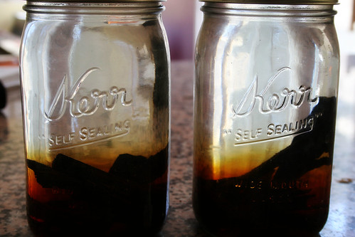 Vanilla Extract after 2 days