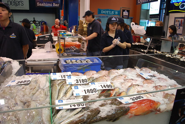 Fish stall sydney fish market flickr photo sharing for Bud s fish market