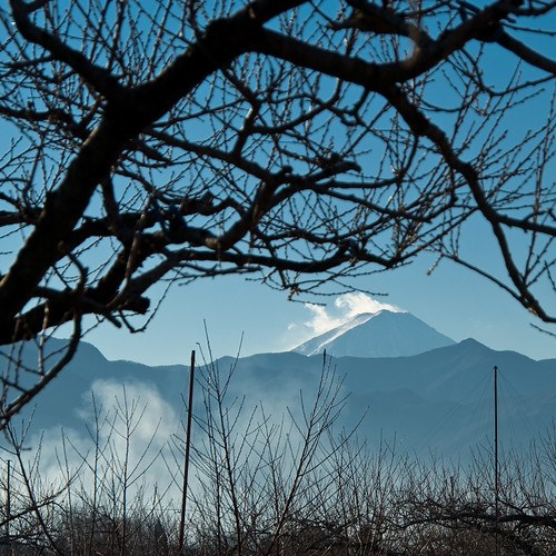 winter mountain mountains berg japan rural landscape geotagged japanese countryside orchard 日本 fujisan bergen 富士山 peachtree mtfuji vulcano yamanashi japonais landschap vulkaan japans kasugai inaka 田舎 桃 500x500 japanisch 山梨県 ruraljapan yamanashiken k10d pentaxk10d 笛吹市 geo:lat=35673518 春日居町 kasugaicho fuefukishi beeldmark geo:lon=138656859 春日居