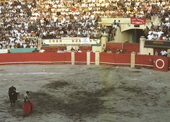 tradition(0.0), baseball field(0.0), animal sports(1.0), sport venue(1.0), sports(1.0), bullring(1.0), performance(1.0), bullfighting(1.0), arena(1.0),