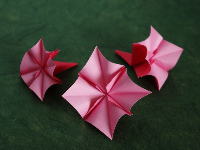Origami Cherry Blossom | Flickr - Photo Sharing! - photo#19