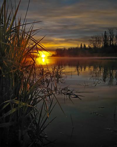 sunrise britishcolumbia soe peaceriver supershot flickrsbest mywinners goldenphotographer diamondclassphotographer flickrdiamond ysplix brillianteyejewel betterthangood theperfectphotographer