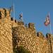 Small photo of Alec on the Castelo dos Mouros