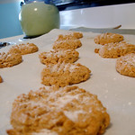 SF/GF/DF Peanut Butter Cookies