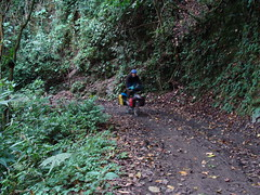 Randy riding down from Tigra National Park