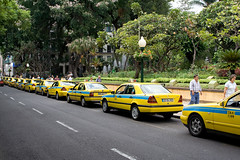 Yellow taxis in Funchal, Madeira