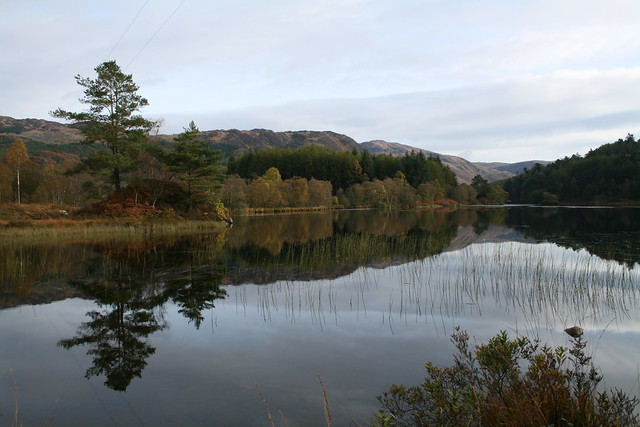 loch trool, galloway forest, scotland