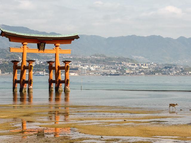 Itsukushima XXIII, Panasonic DMC-TZ40