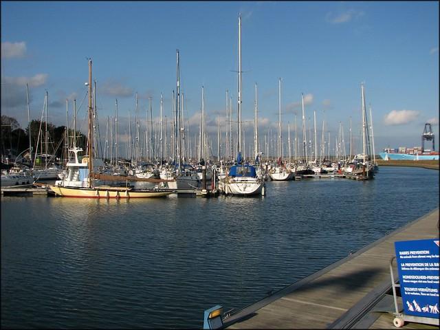 Shotley Gate Marina