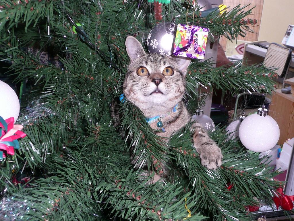 Christmas Tigger
