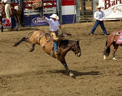 fair(0.0), animal sports(1.0), rodeo(1.0), western riding(1.0), team penning(1.0), event(1.0), equestrian sport(1.0), sports(1.0), western pleasure(1.0), charreada(1.0), reining(1.0),